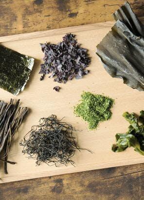 Recettes avec des algues