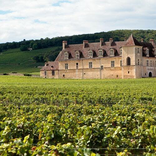 Clos de Vougeot en Bourgogne