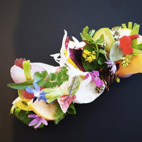 Tartelettes de légumes de Provence au caillé de chèvre et herbes du jardin