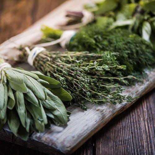 Herbes aromatiques : variétés et bienfaits