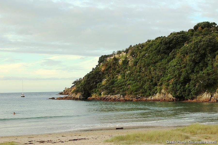 végétarien rencontres Nouvelle-Zélande Quels sont les meilleurs sites de rencontres gratuits yahoo réponses
