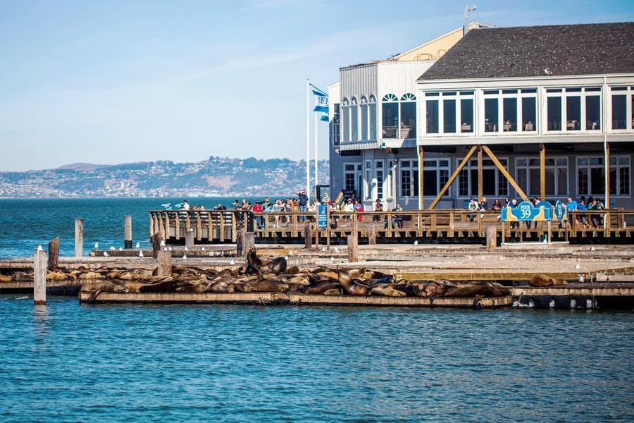Le quai des pêcheurs - San Francisco