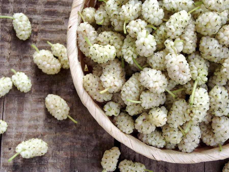 Mulberries (mûres blanches)