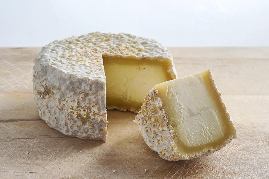 Goat cheese - Régal