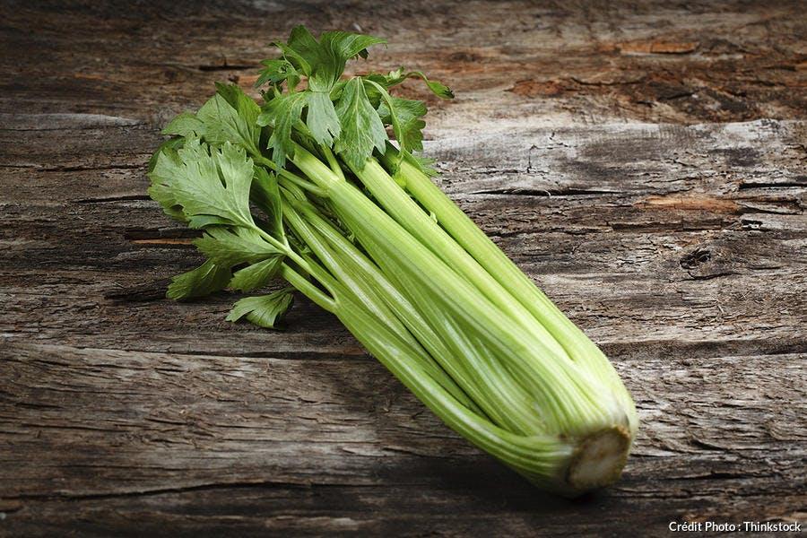 celeri-th.jpg