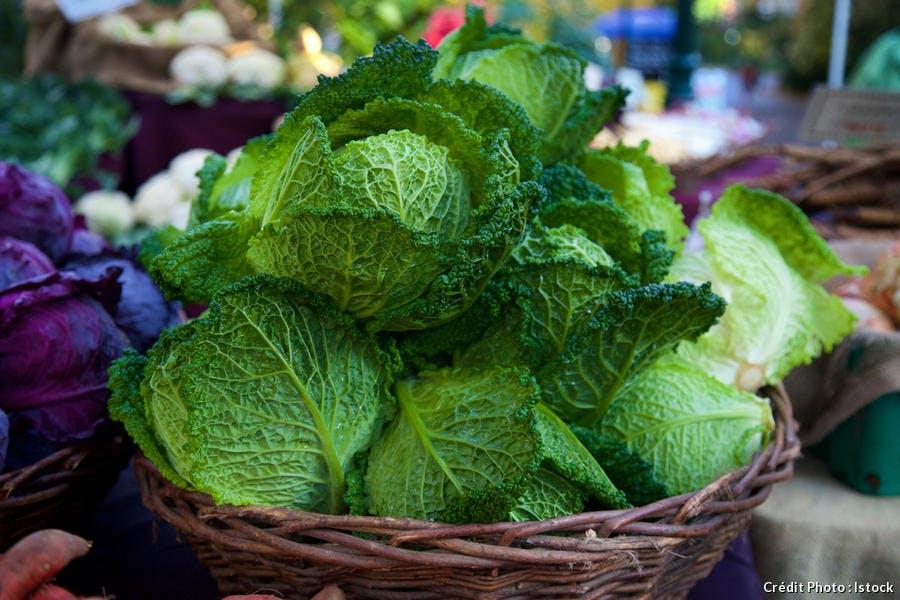 Comment cuisiner les choux r gal - Comment cuisiner un choux vert ...
