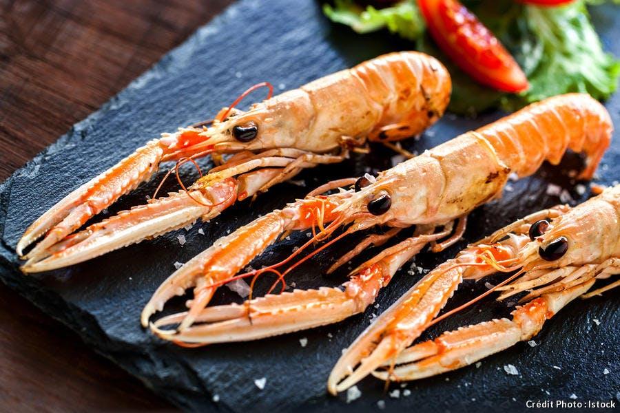 langoustine-crevette-crustace_istock.jpg