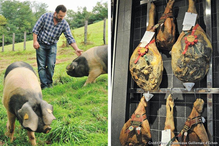 Porc pie noir du Pays Basque / Jambon