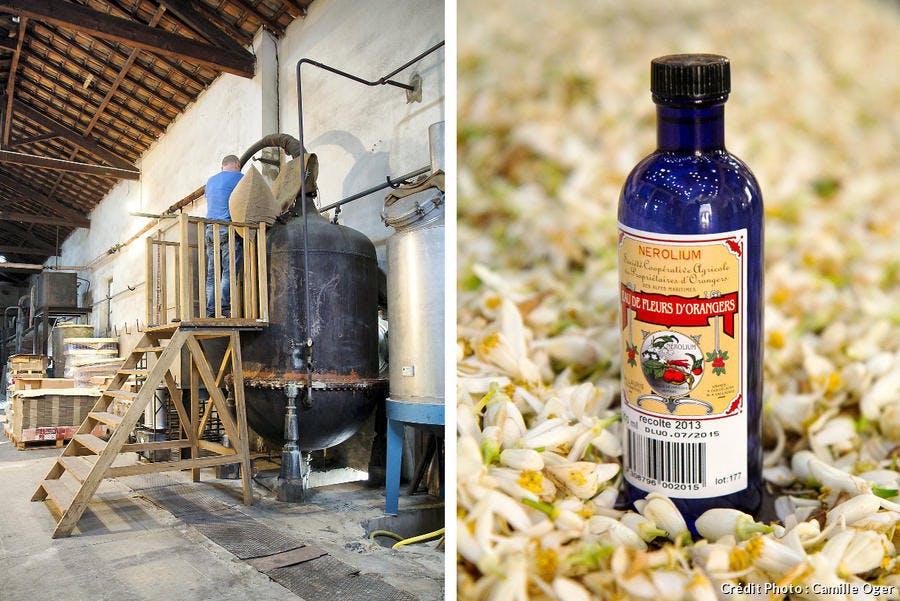 r-avn_r65-fleur-oranger-distillation_co.jpg