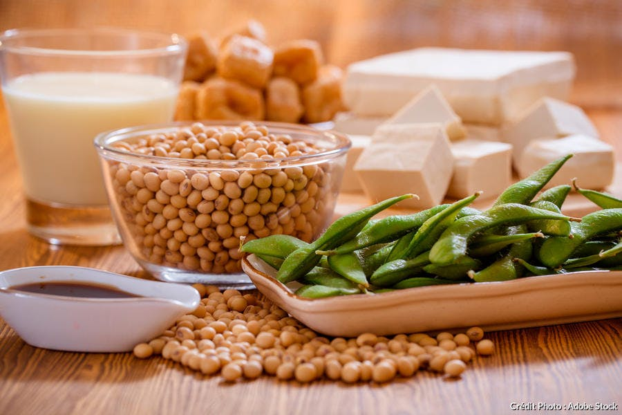 Les produits du soja