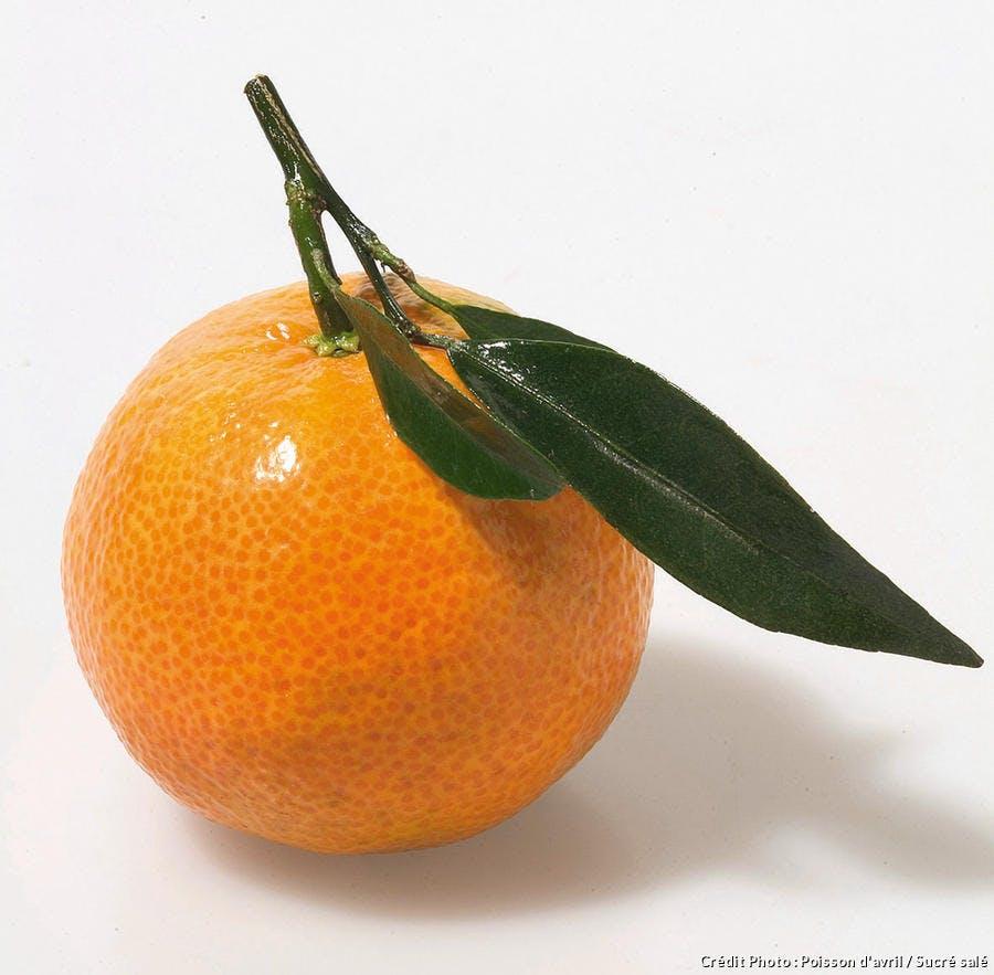 r38_clementine_ss.jpg