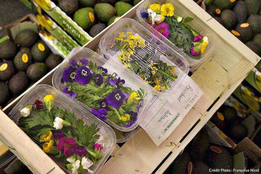 rungis barbot fleurs