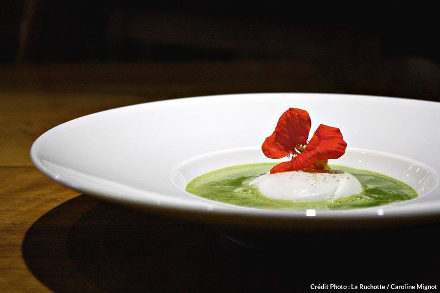 r52_soupe-d-orties-vertes_cmi.jpg