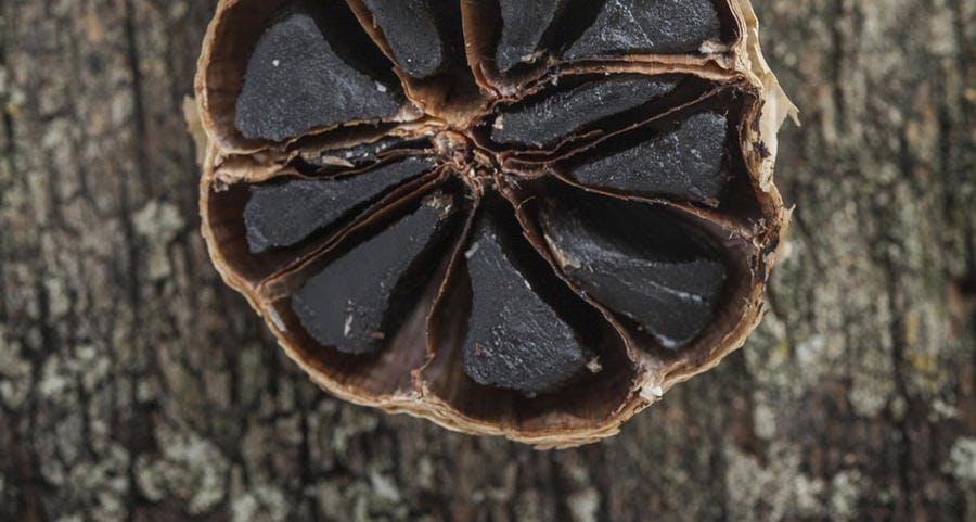 r65_ail-noir-recadre_fo.jpg
