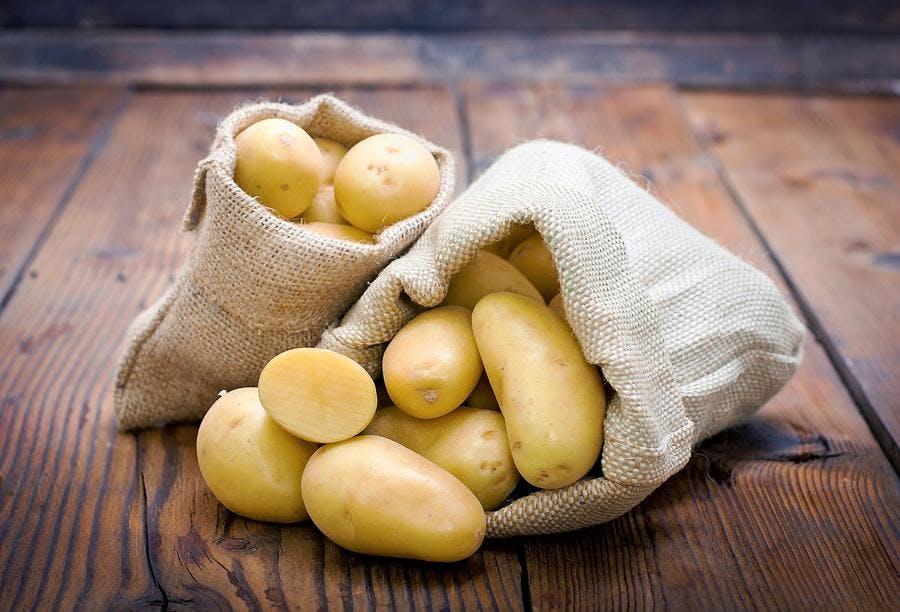 r69-pomme-de-terre-charlotte_fotolia.jpg