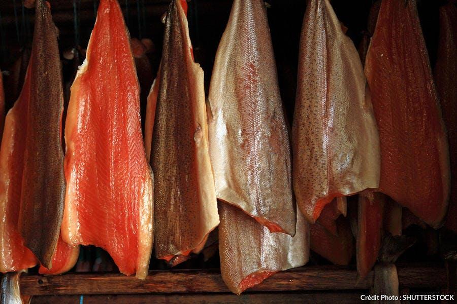 Salage et fumage du saumon