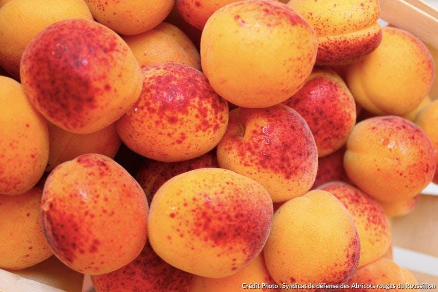 r_abricots-rouges-roussillon-aop_syndicat.jpg