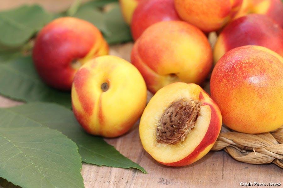 r_brugnon_fruit_istock-515684939.jpg