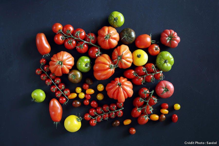 La gamme de tomate Savéol