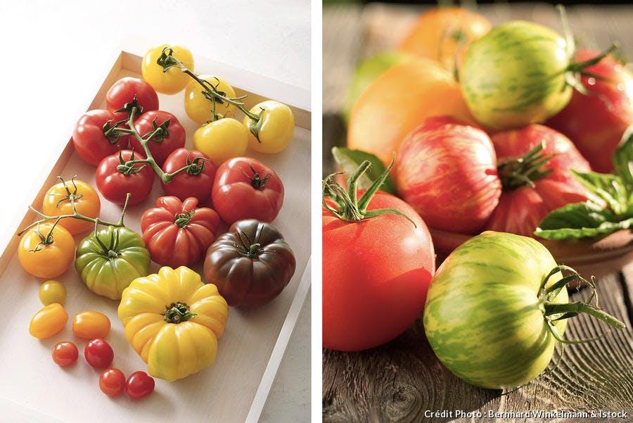 Variétés de tomates anciennes