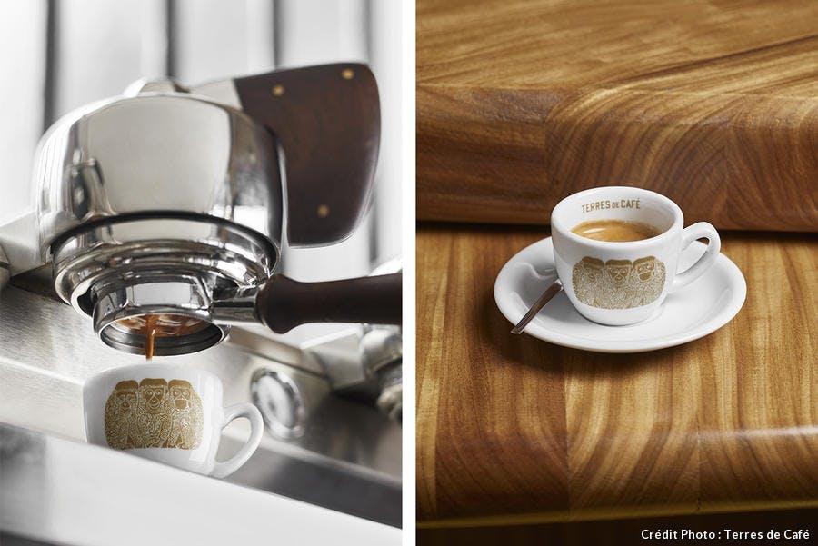 r_terres-de-cafe-montage.jpg