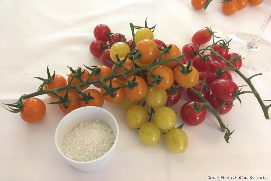 Tomates cerises Savéol