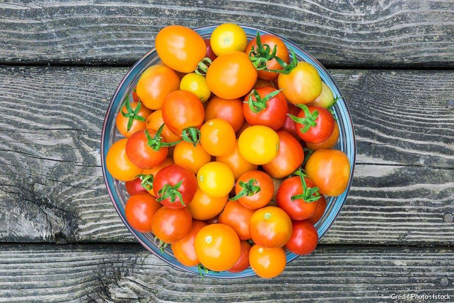 Tomates cerises colorées