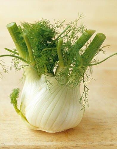 Salade au fenouil, à la courgette et à la grenade*