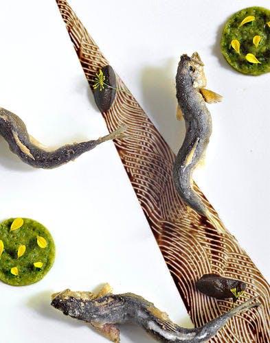 Friture de truitelles, purée de concombre et tapenade