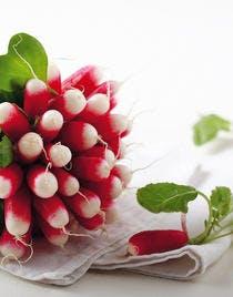 Verrine crémeuse aux radis, au concombre et aux framboises