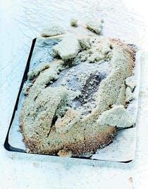 Dorade grise croûte de sel gris
