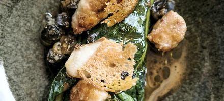 Ris d'agneau croustillant, escargots et jeunes pousses de chou