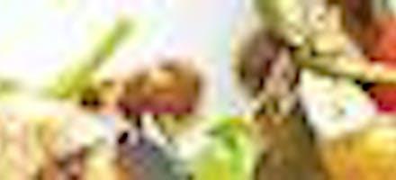 saladde d'aubergines grillées
