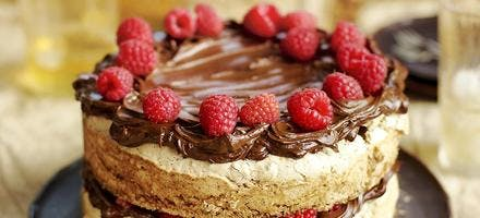 gâteau moelleux aux noisettes et aux framboises