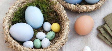 Oeuf de Pâques colorés