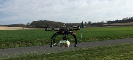 oeufs de Loué par drones