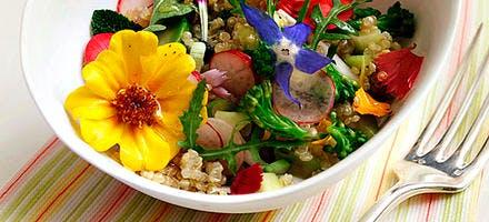 Salade de quinoa aux fleurs