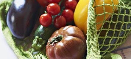 Trilogie de tomate, caviar d'aubergine, courgette crue et harissa de poivrons