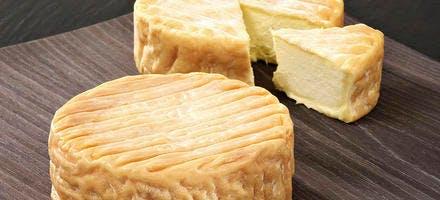 L'époisses, le régal des fromagers