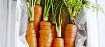 Salade de légumes en bocaux