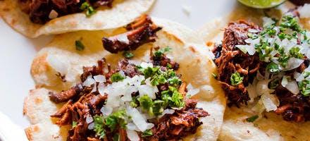Tacos de porc effiloché