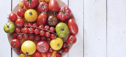Tomates Savéol
