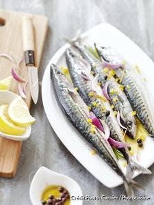 maquereaux à l'huile d'olive et au citron