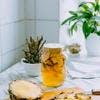 Tepache : boisson fermentée (kombucha) à l'ananas
